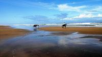 Tembo Court Beach