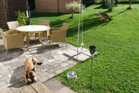 Garten - Dogwalker DS