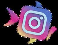 Tik op het logo voor instagram