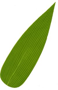 人工葉 人工の笹 人工の葉 ポリエチレン 人工笹