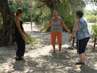 Qigong und Tai Chi Urlaubskurse, im Olivenhain und am Meer lernen, Tanz der fünf Elemente
