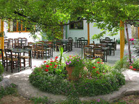 Taverne Rodia