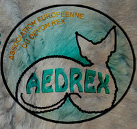 Logo AEDREX