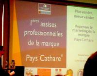 au conseil général à Carcassonne
