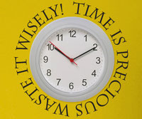 Time is precious waste it  wisely! vinyl wall art quote