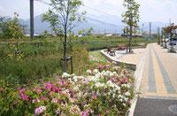新居浜駅前公園(県道133号線沿い)
