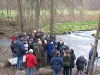 Gut besucht: Die Wasseramsel-Exkursion an der Elsava