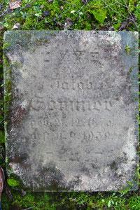 Freigelegte Grabplatte