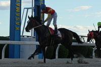 ノゾミダイヤ号と鞍上の大畑雅章騎手