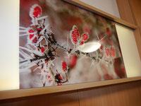 Die Bilder- und Lichtleiste an der Wand des Sinneszimmers im Gerricusstift.