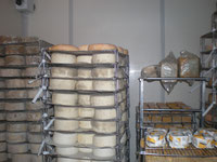 Cheeses at Fontegranne