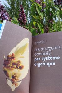 Livre Mon manuel de gemmothérapie la vitalité au coeur des bourgeons pour une bonne santé au quotidien guide familial pratique