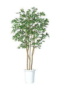 人工樹木シルバーバーチH1800