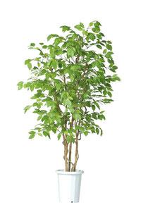 人工樹木ブナH1800
