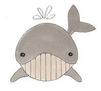 Wal Zeichnung Kinderpullover Applikation GOTS