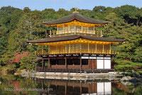 visite du Kinkakuji avec un guide parlant le francais specialise dans les sejours au Japon