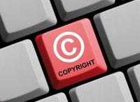 velleles, méduses voilier, droit d'auteur, copyright, propriété intellectuelle