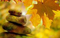 Ätherische Öle befreien die Atemwege