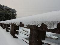 雪のカーテン(H.28,1,25撮影)