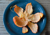 Mandarinenschale | Skin of a mandarine