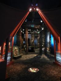 Bild Museum