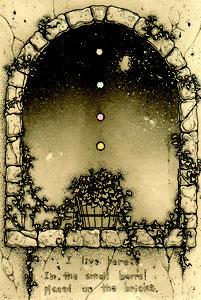 「ヘデラの樽」 100x70mm 腐蝕銅版画
