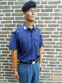 Staatspolitie, inspecteur