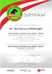 Zertifikat für Therapieteam