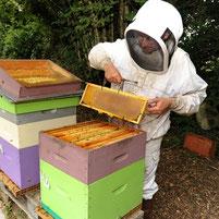 apiculteur de miel et goûter d'antan en deux-sevres