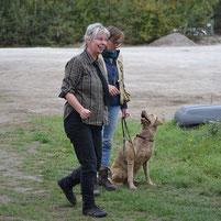 Bea Eddelbüttel WorkandTalk Hundtrainerin Hundtrainer Chesapeake Bay Retriever Deutschland Germany