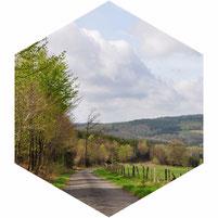 Vergezicht belgische Ardennen