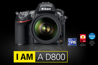 Nikon D800 36.0MP