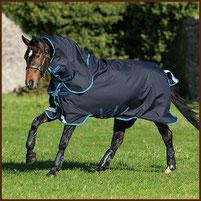 HORSEWARE Amigo Bravo 12 Plus Bundle