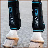 Reitsport Heiniger Schönbühl - Horseware Ice-Vibe Boots