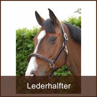 Reitsport Heiniger Schönbühl - Linkfoto Lederhalfter