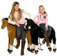 Animal riding verhuur te huur paardrijden