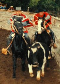 Luis Fanor Maturana y Gaspar González Ubilla