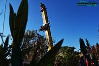 Knall und Fall Free Fall Tower ABC Rides Freefall Taunus Wunderland Freizeitpark