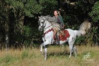 Pferd & Mensch / Horses & People