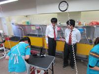 トリマーの仕事を見学する生徒たち。