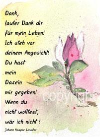 Blüte mit Gedicht von Lavater