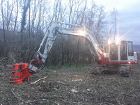 Energieholzernte    Erdbewegung