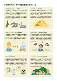 小規模木質バイオマス発電事業化のポイント