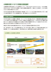 小規模木質バイオマス発電の技術選択