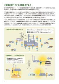 小規模木質バイオマス発電のすすめ