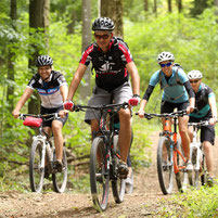 Mountainbiker fahren im Wald bergab