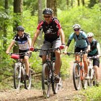 Mountainbiker fahren im Wald