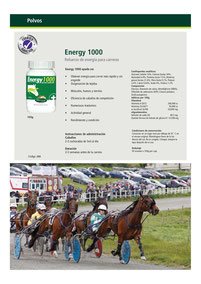 ENERGY 1000