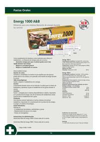 ENERGY 1000 A&B