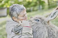 Et'âne est le premier âne né chez Savoy'ânes. C'est un âne d'origine non constatée